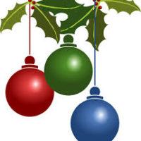 Orari natalizi Actiongym Flero